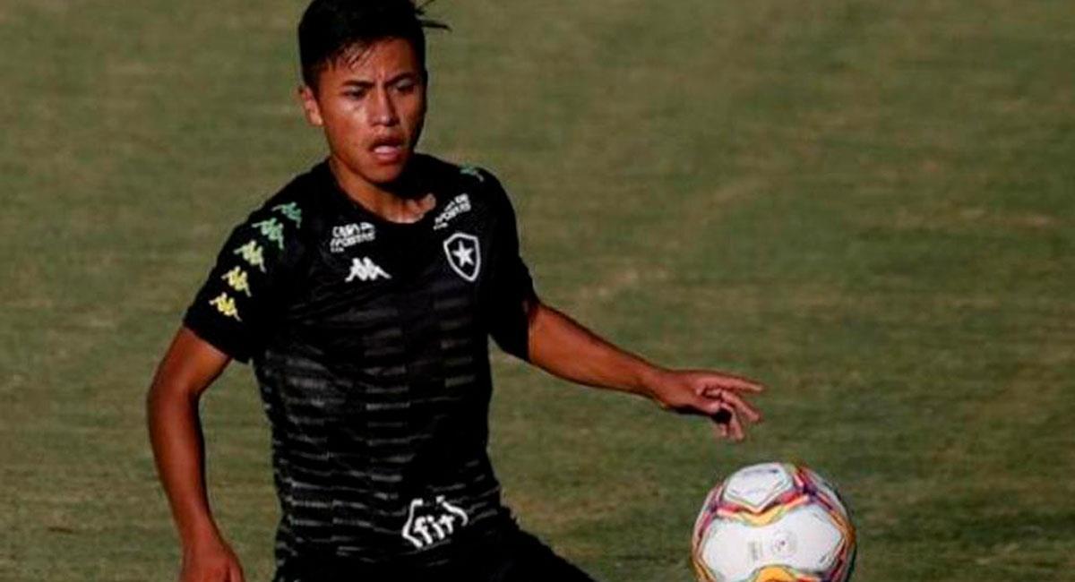 Lecaros jugó la última temporada en Avaí y Botafogo. Foto: Twitter Captura